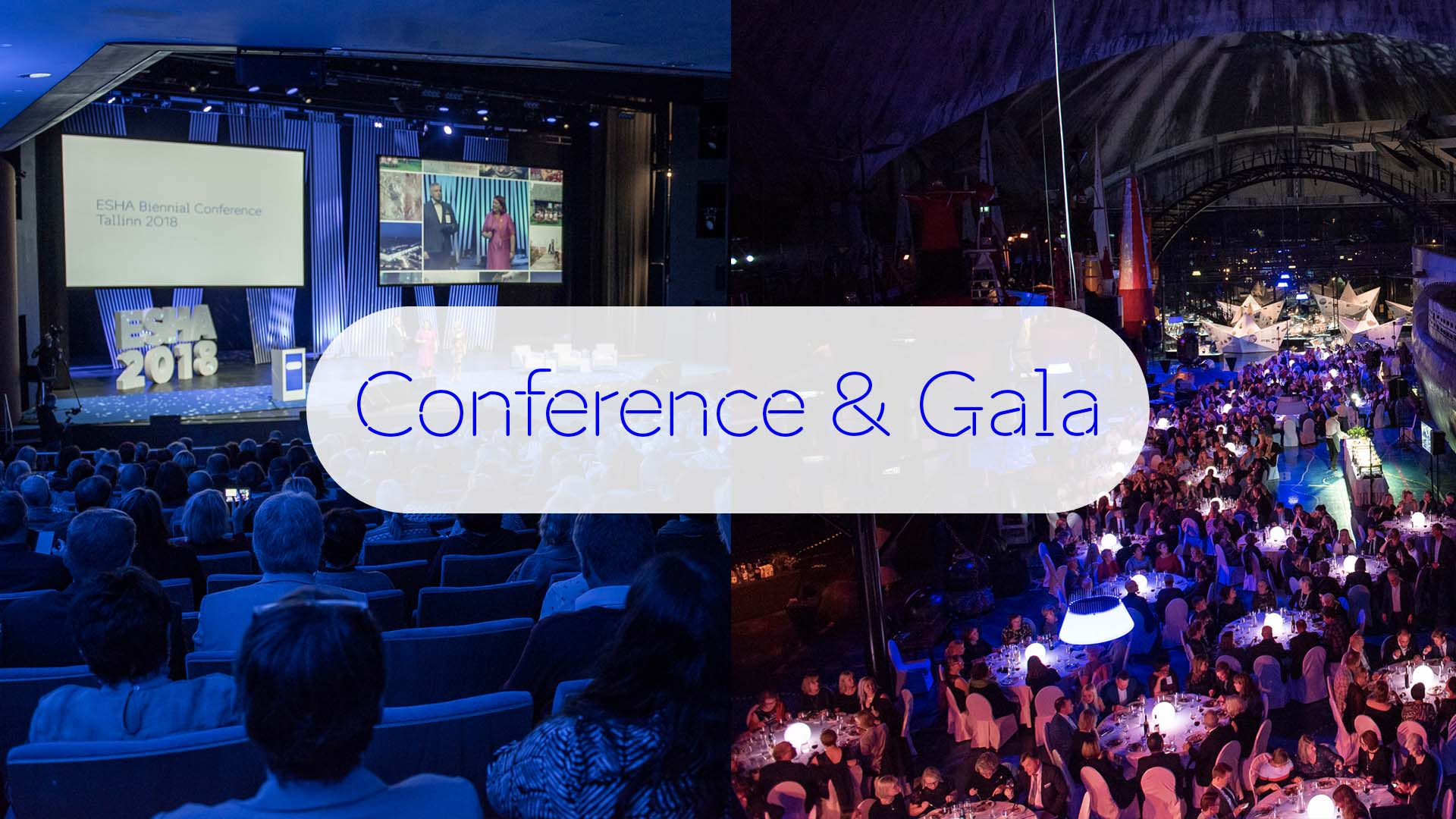 Conference and Gala Photos